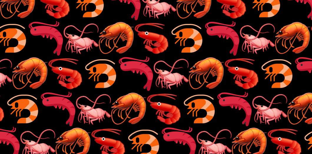À cause des humains, les crevettes sont sous Prozac