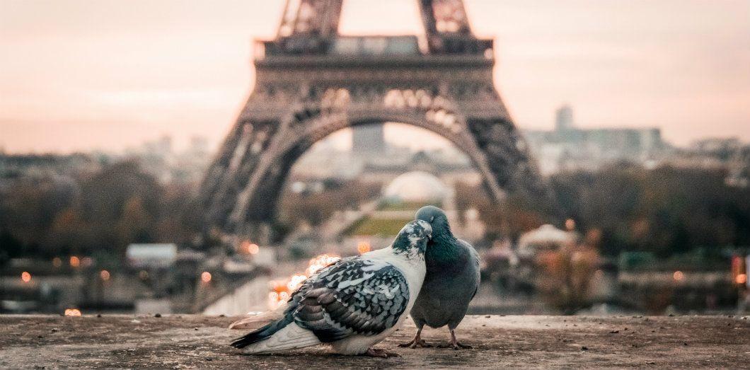 Avouez Le Vous Aussi Vous Avez Cru Au Mythe De Paris Capitale