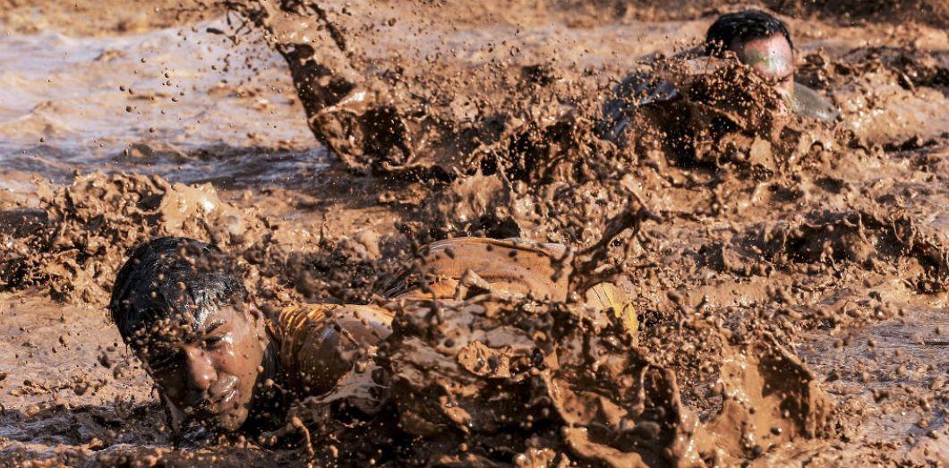 Pour échapper au bain de boue, faire le fou | squeeze via Pixabay COLicense by