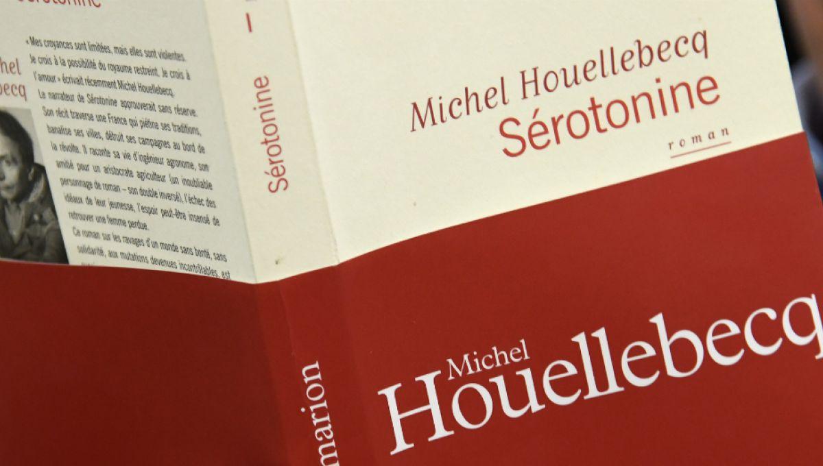 «Sérotonine» de Michel Houellebecq, roman maladroit, vrai ...